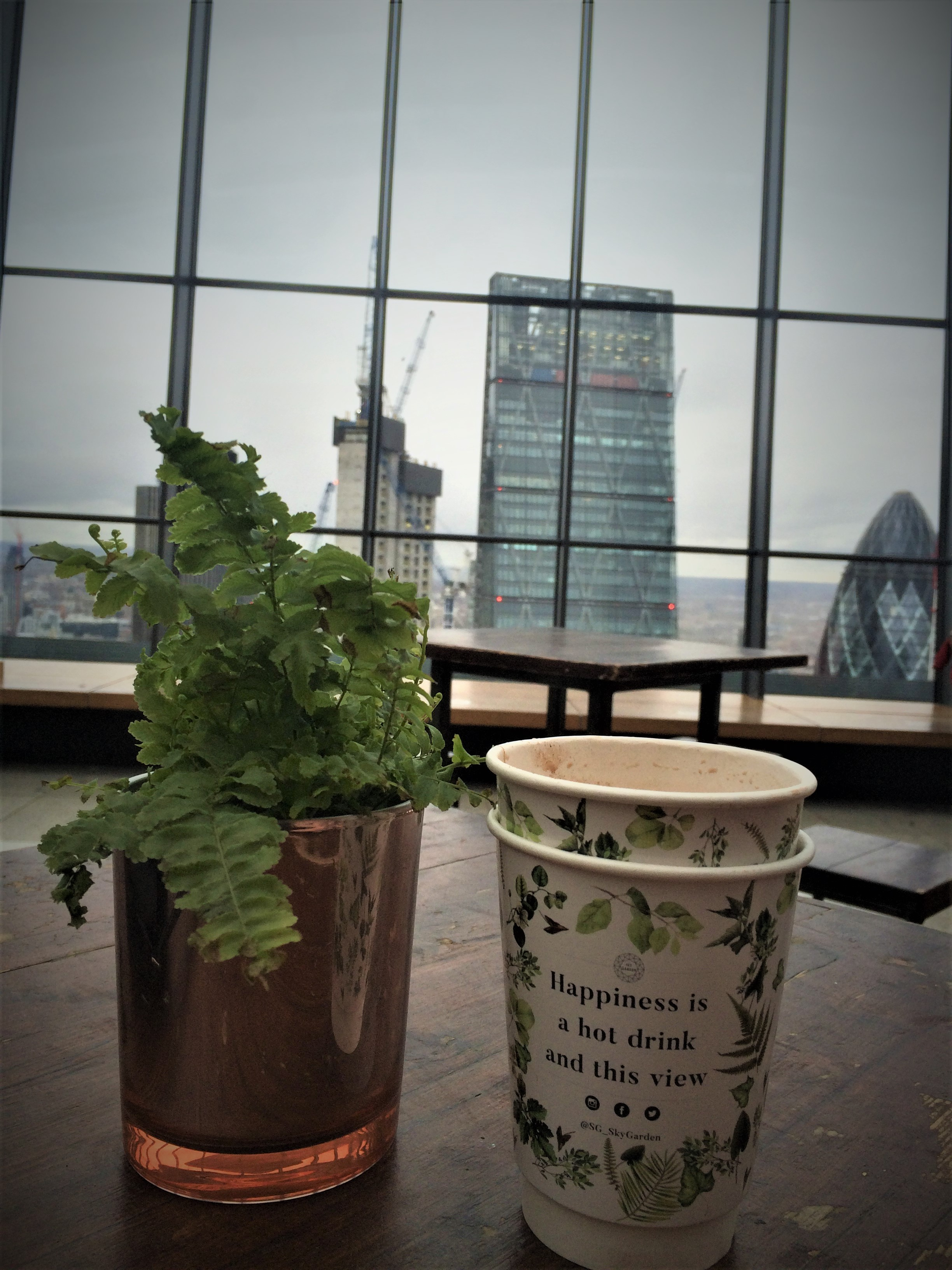 """A plant in a golden pot next to a cup with the quote """"happiness is a hot drink and this view"""", Then the view of London's skyline in the background."""