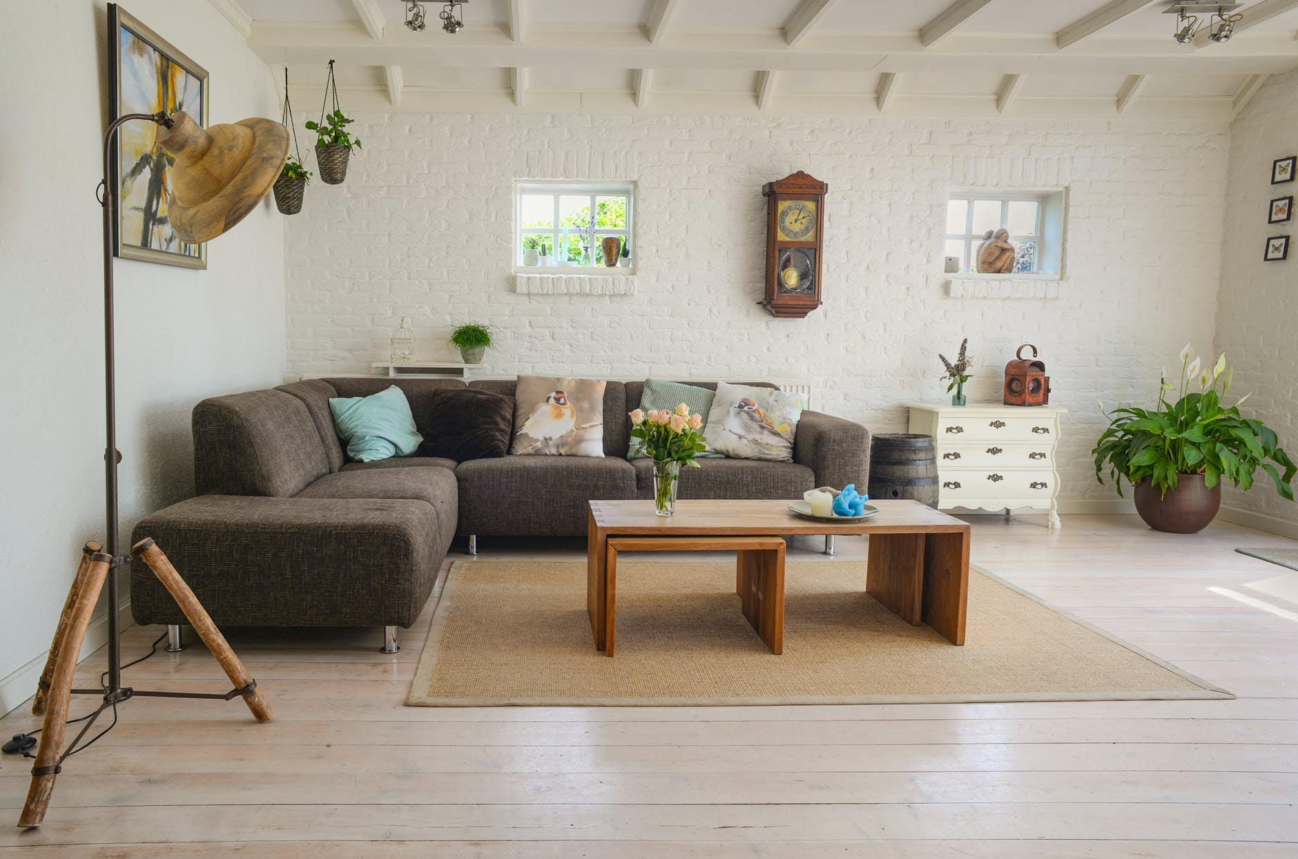 A living room decorated in white paint, with a L-shape grey sofa in the left corner with some pillows that have birds on them. There are some hanging plants above the sofa, and some floor plants. There is some small windows, coffee table, lamp, drawers and a clock on the wall.