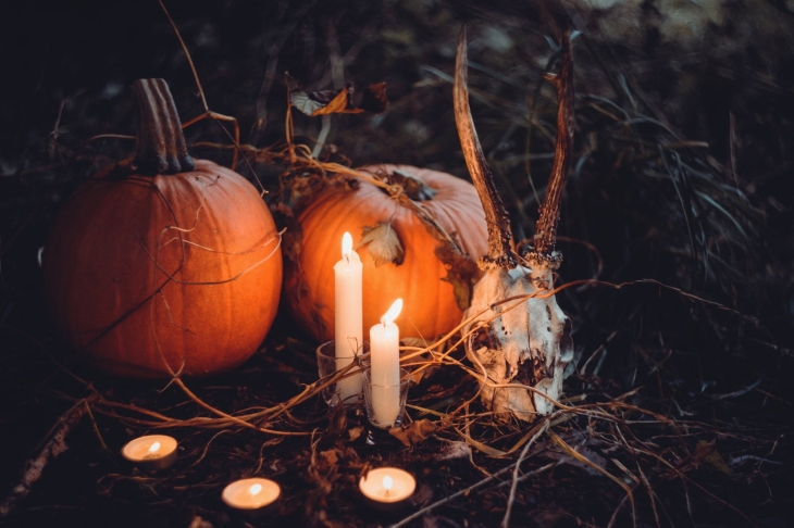 A couple of huge orange pumpkins surround by sticks and a candles that are lit up, next to a fake skull.