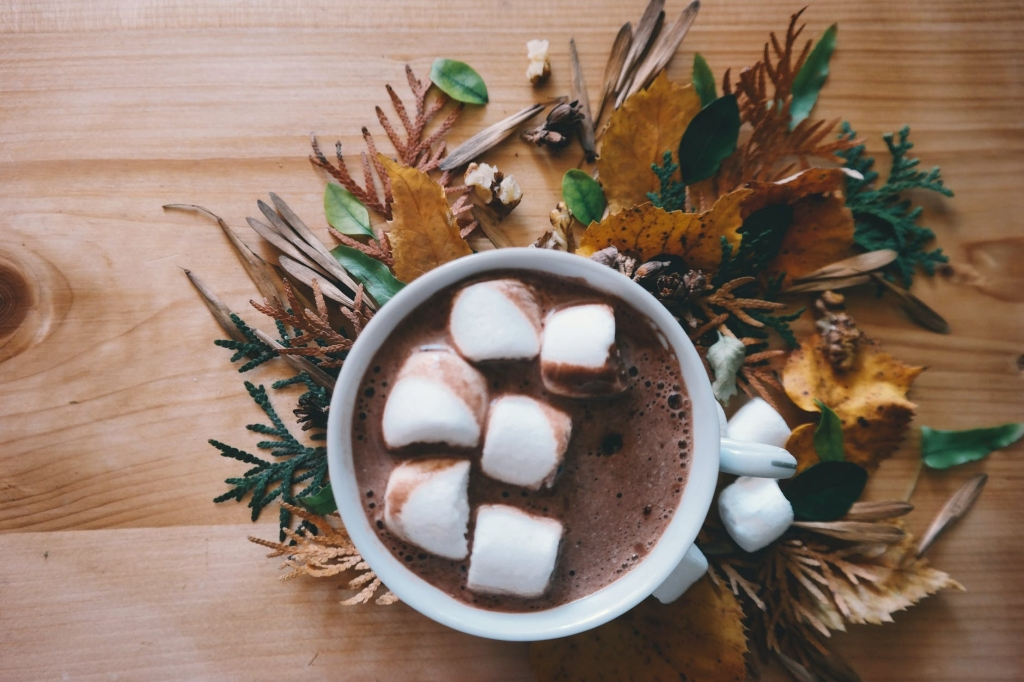 A birds eye view of a bit chocolate with marshmallows and some leaves as decorations around the bottom of the cup