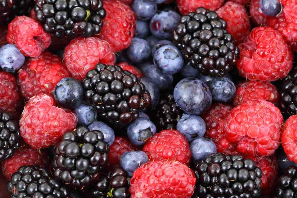A close up of a selection of berries including; raspberries, blueberries and blackberries.